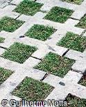 Piso em concreto e grama