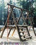 Brinquedo multiuso de madeira