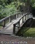 (OT.MA5) Ponte de madeira